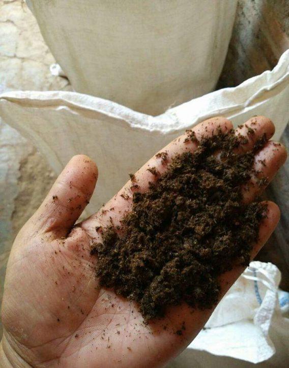 Dijual Pupuk Organik Hasil Fermentasi Untuk Tanaman Buah