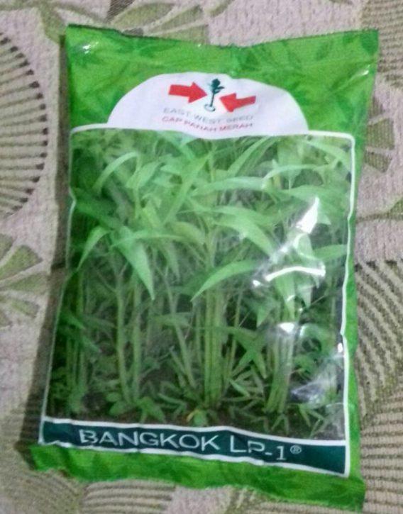 Bibit Benih Kangkung Bangkok LP-1 Isi Kemasan 1 Kg